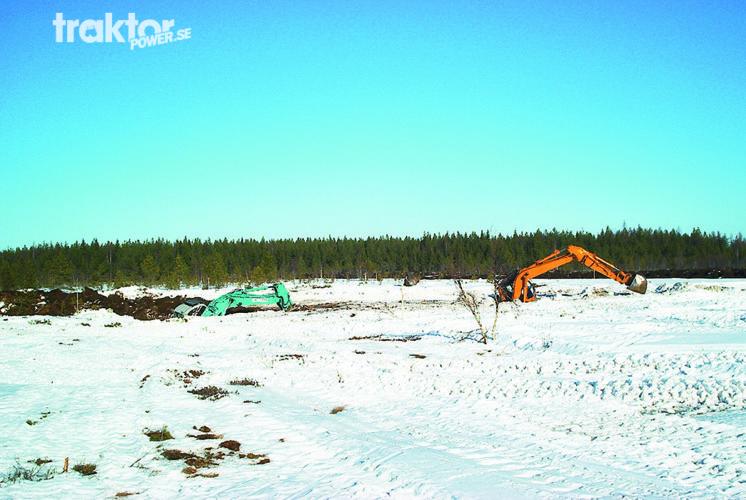 Grävarna är vilda i Finland