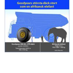 Goodyeardäck i elefantklass