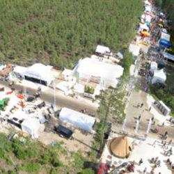 Skogsnolia laddar – för ett ljusare 2015...