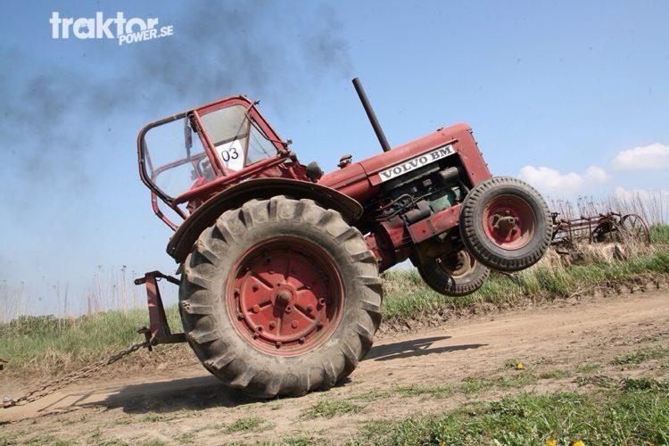 Bison på bakhjulen