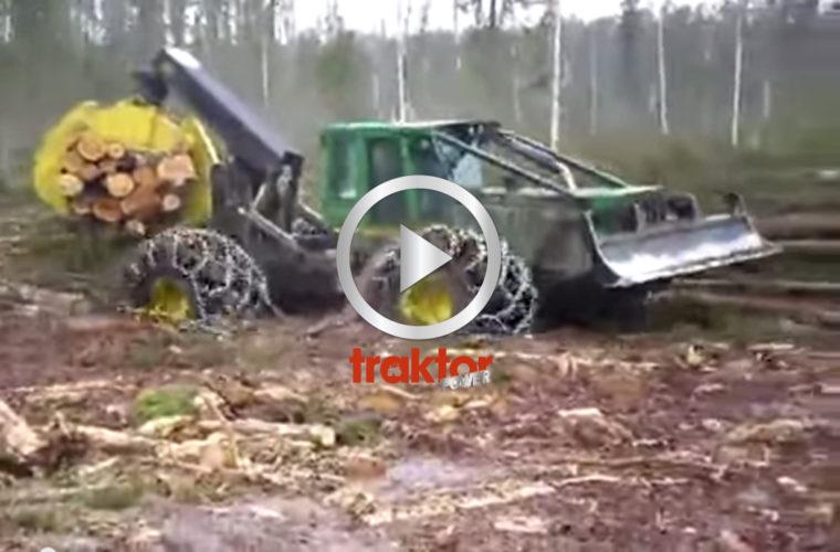 Skogsbruk i Ryssland