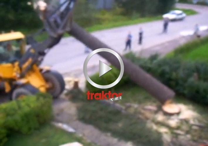 Misslyckad trädfällning!