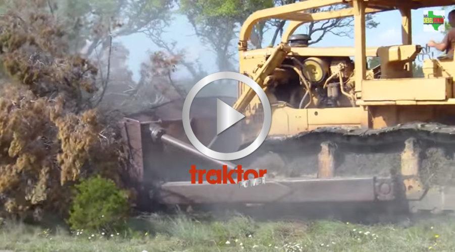 Caterpillar D9:a röjer skog