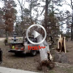 Sämsta trädfällningen någonsin?!!