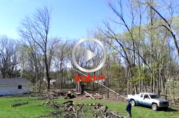 DAGS att ta ned stora trädet!!!