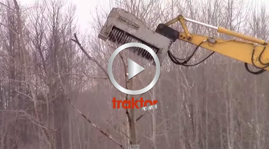 DEN nya skogsätaren!!!
