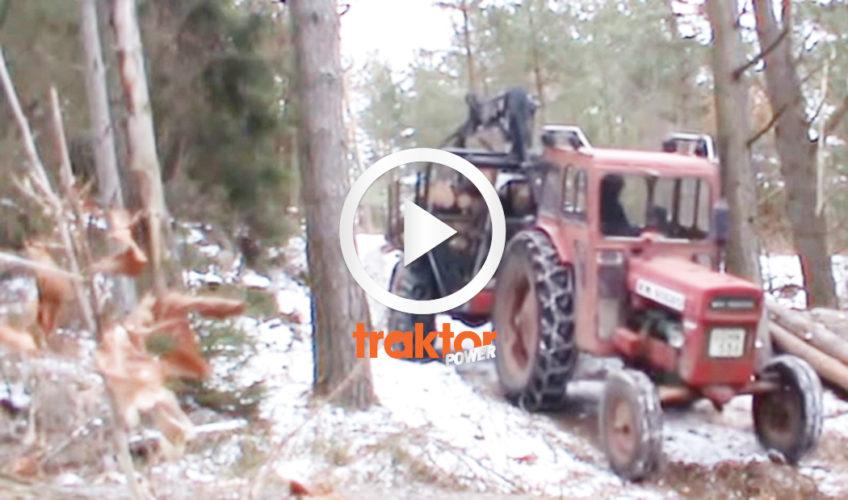 BM Volvo i skogen!