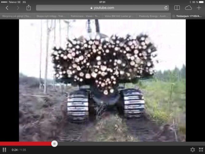 OKEJ lass i skogen!