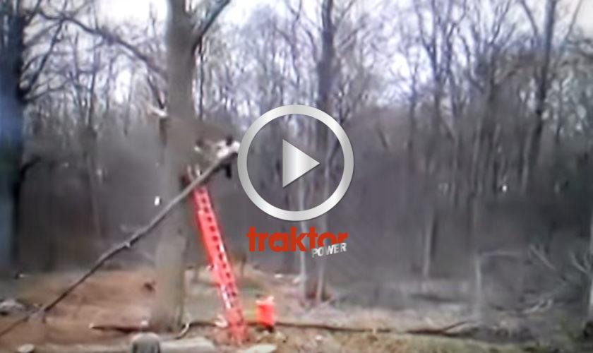 Så kan man också kapa grenar!