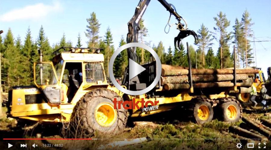 Häng med till Skogens veteraner i Dalskog!