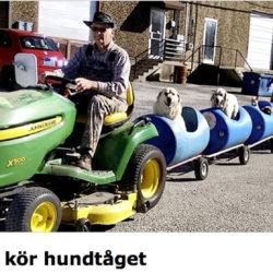 John Deeer drar ett tåg med hundar!