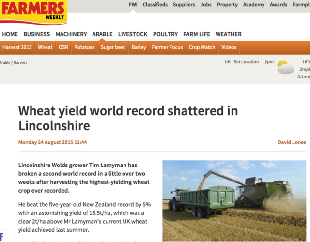 Rekord: 16,5 ton vete per hektar!