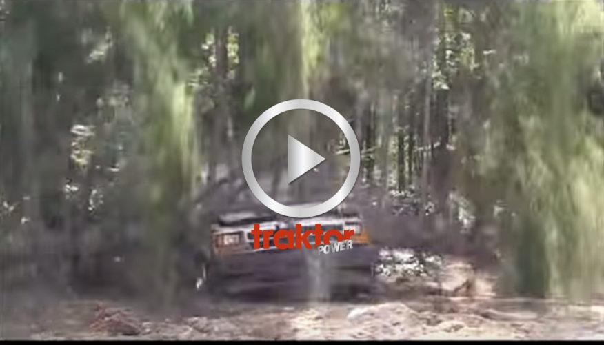 Trädet faller rakt mot bilen!!! Hur går det?
