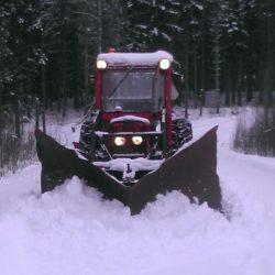 Buster i snösvängen.