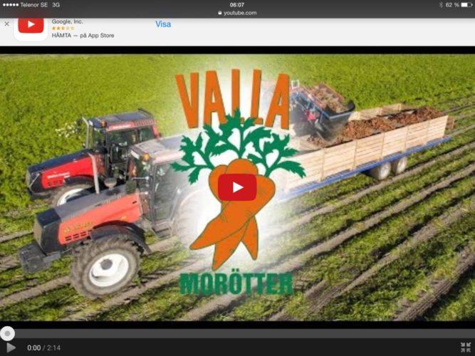 Valla skördar morötter!