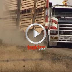 Långa lastbilar i Australien!