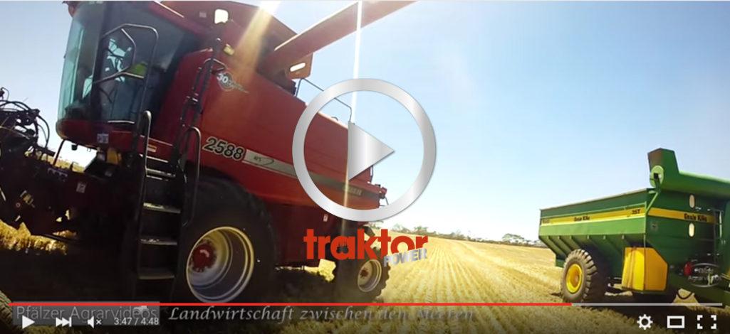 Max action på vetefältet i Australien!