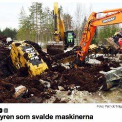 Party i Umeå