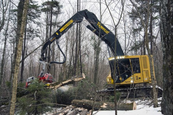 Tigercat visar bandgående skördare på Elmia Wood